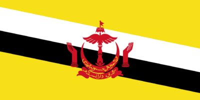 Worldcoins Brunei
