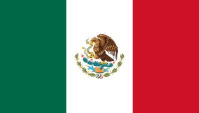 Worldcoins Mexico