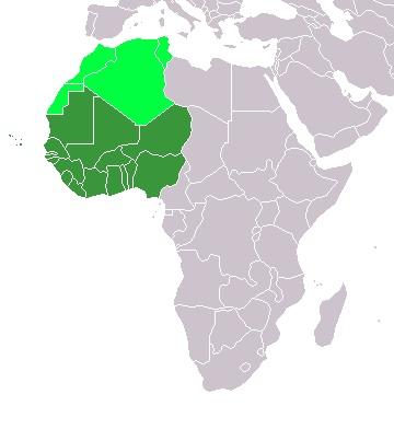 Bankbiljetten West African states