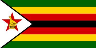 Worldcoins Zimbabwe