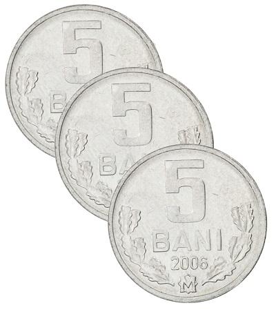 Worldcoins Moldova 5 Bani